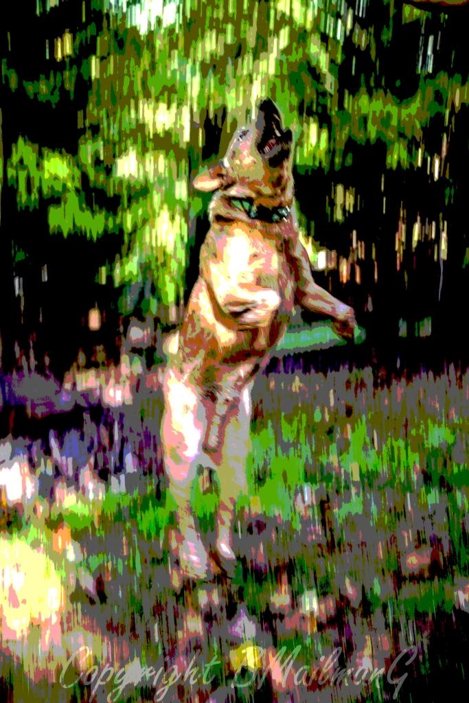 Vertical Dog copy2